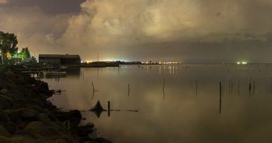 Laguna Santa Gilla, foto Marina Federica Patteri