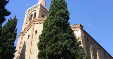 Albero Rimini
