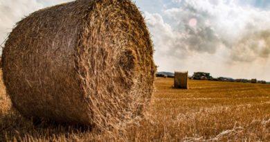 Agricoltura, foto europarl.europa.eu