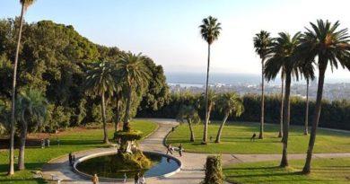 Parco Capodimonte, foto Peppe Guida commons wikipedia