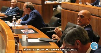 Audizioni delle Associazioni di Categoria, foto Sardegnagol riproduzione riservata