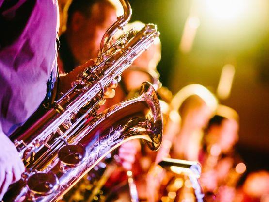 Concerto live, foto Free-Photos Pixabay