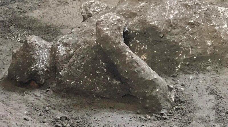 Calco Pompei, © Luigi Spina