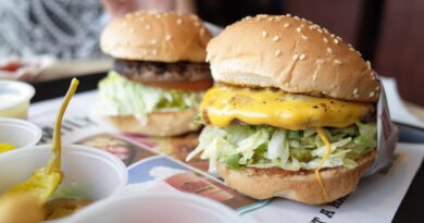 Hamburger, Foto di Sue Park da Pixabay