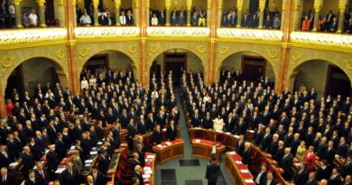 Parlamento ungherese, Foto di Norbert Oriskó da Pixabay