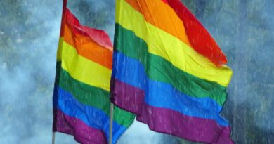 LGBTIQ+, Foto di Corinna Behrens da Pixabay