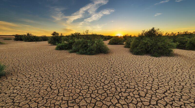 desertificazione, Foto di Jose Antonio Alba da Pixabay
