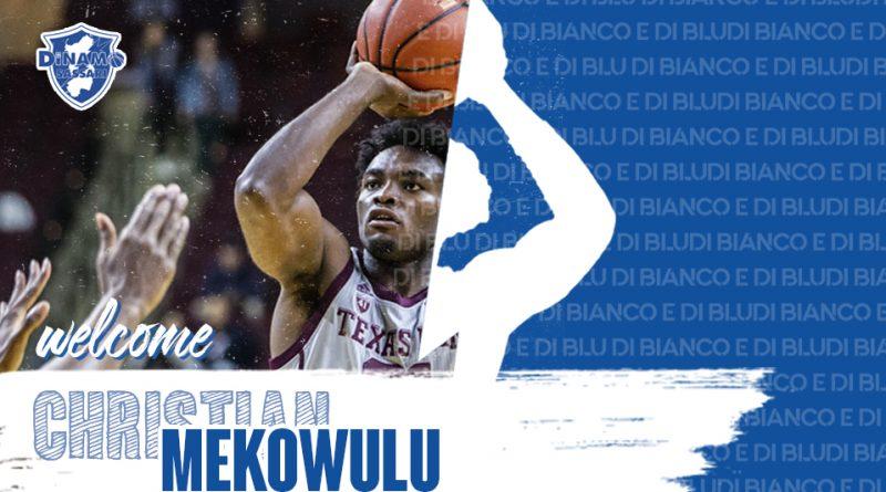 Christian Mekowulu
